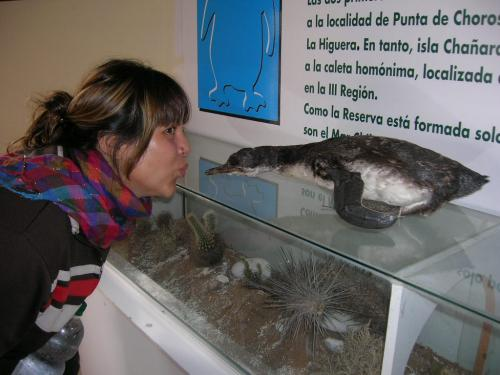Centro de informacion Punta de Choros